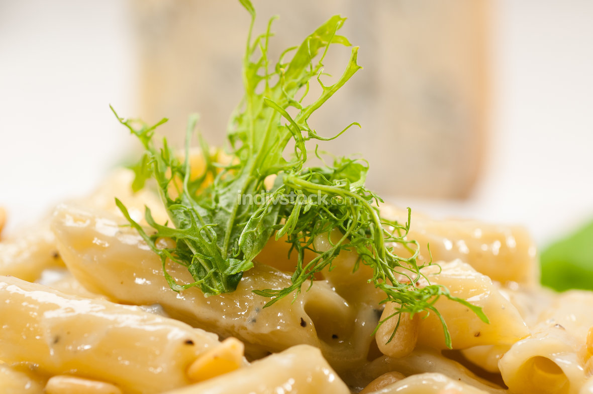 Italian pasta penne gorgonzola and pine nuts