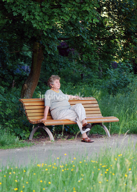 Retiree on park bench