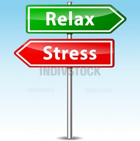Vector stress and relax directions concept