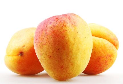 Ripe apricot in closeup