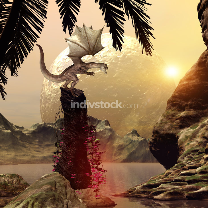 Dragon standing on a rock in attack position