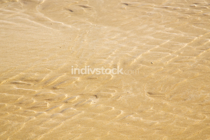 dun  in africa brown coastline wet sand beach