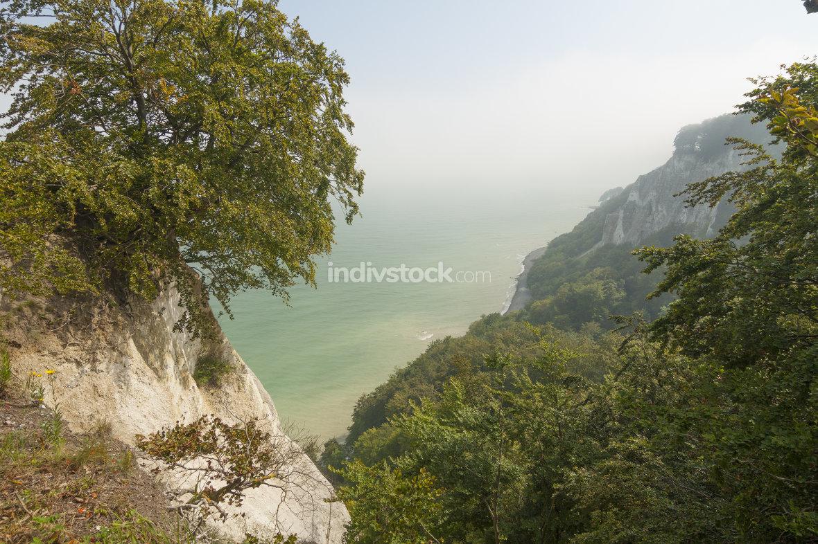 Jasmunder limestone