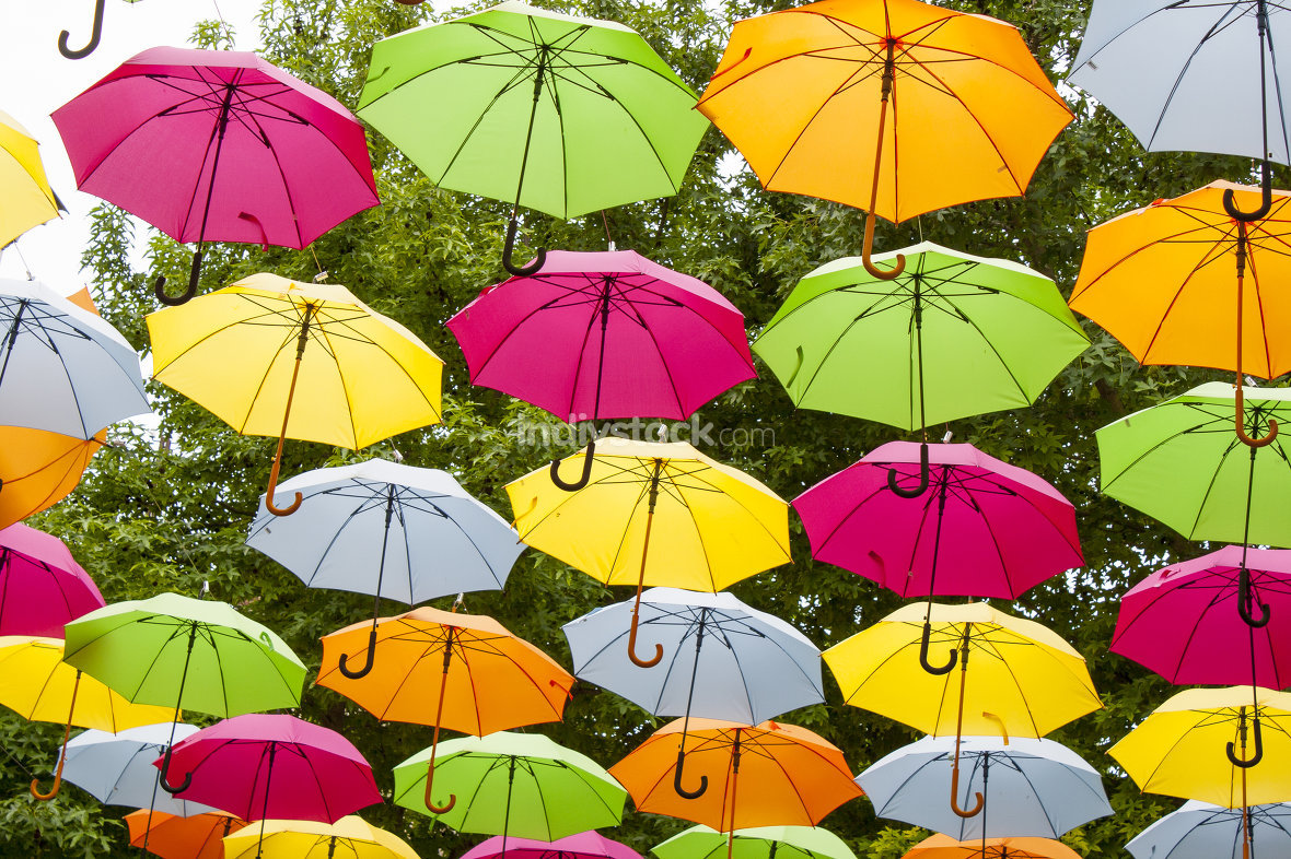 colored umbrellas in the air
