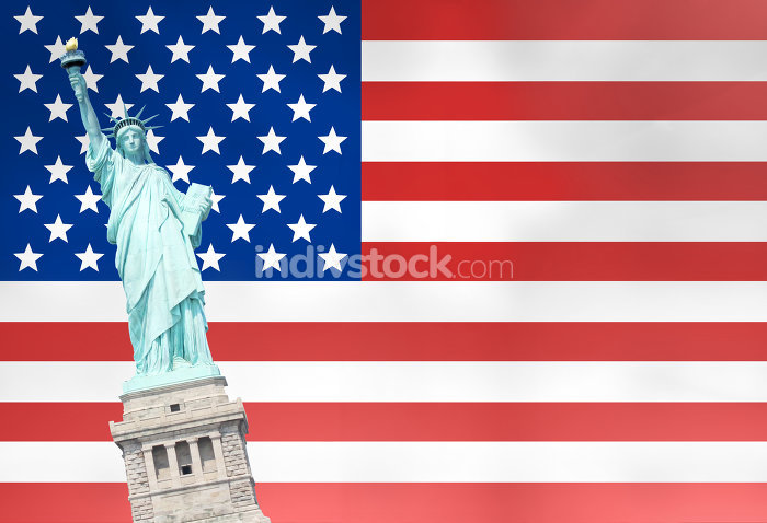 free download: usa fun statue of liberty