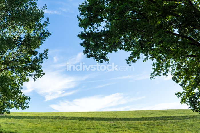 Meadow with sky and clouds