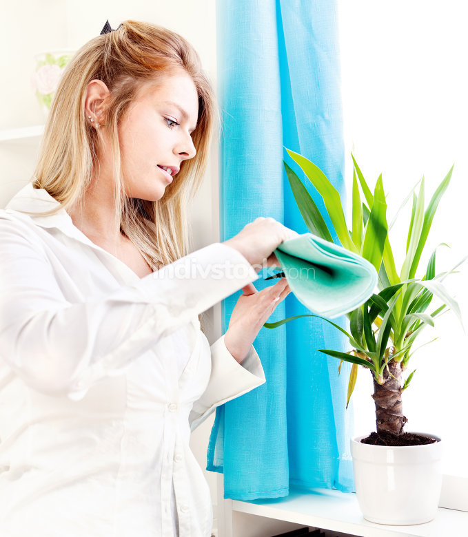 woman clean leaves at home