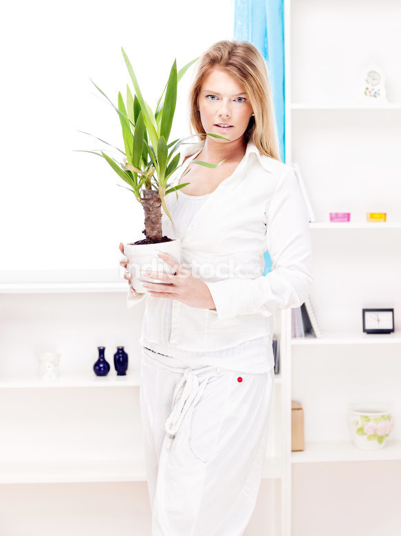 woman holding plant in pot at home