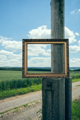 Picture Frames in nature
