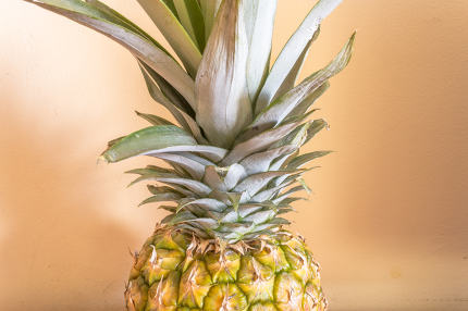 ripe pineapple close -up