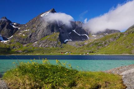Summer in fjord