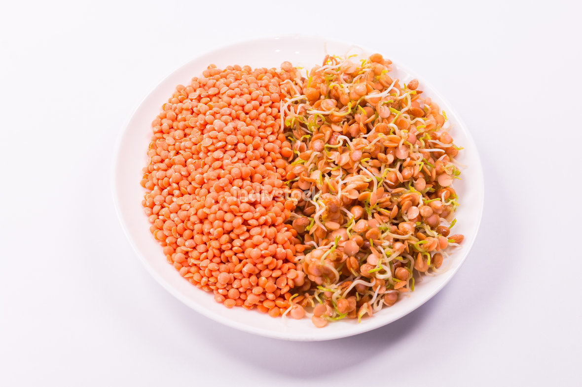 a mixture of raw red lentils and sprouts on white