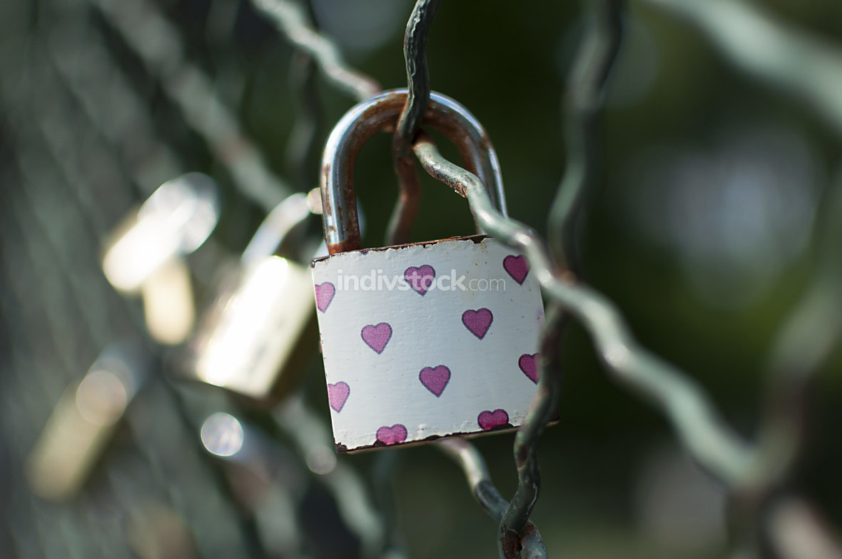 Padlocks symbolizing everlasting love