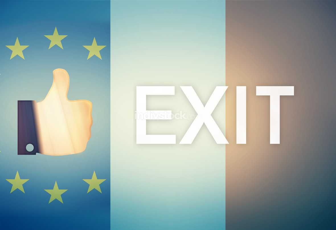 Thumbs up Referendum Exit Europe France Combined Flag