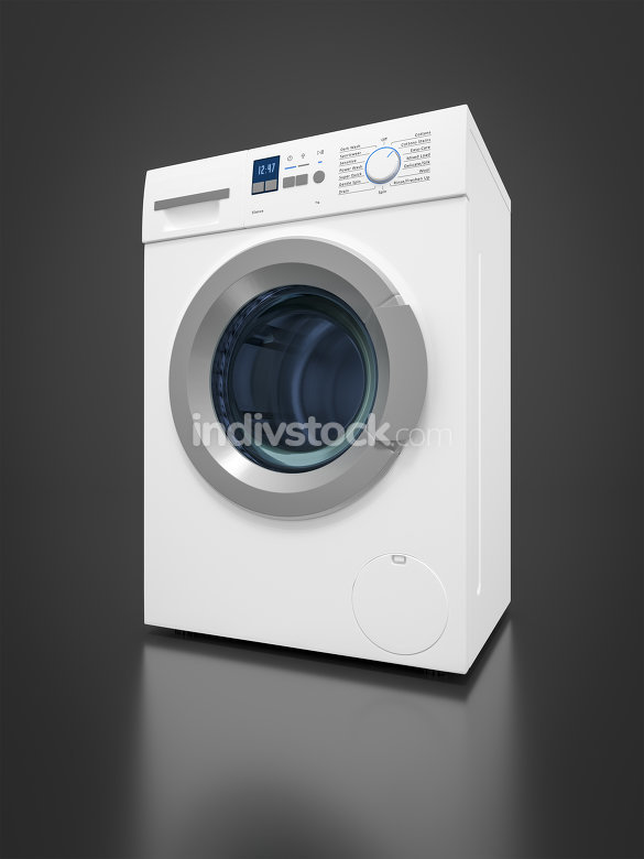 typical washing machine 3D Graphic