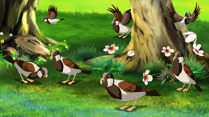 Flock of Sparrows Feeding in the Forest