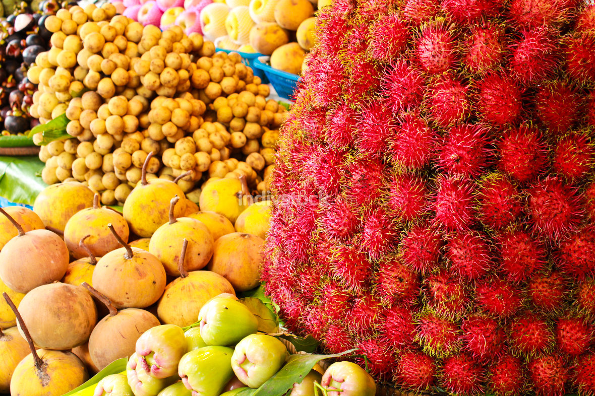 free download: Thai fruits