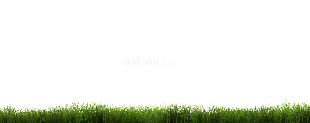 green grass 3d render. grass background