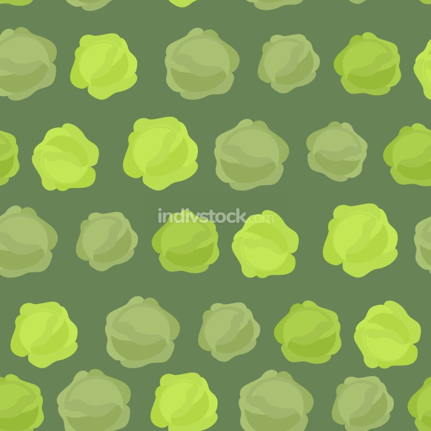 Background of green cabbage. Vector seamless pattern of vegetabl