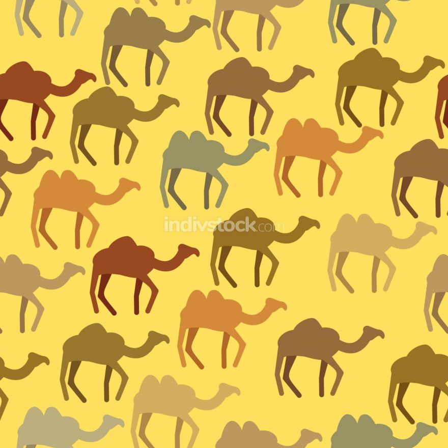 Camels seamless pattern. Background of desert animals. Vector or
