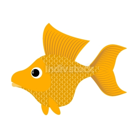 free download: Goldfish on white background. Fabulous fish fulfills desires. Ye