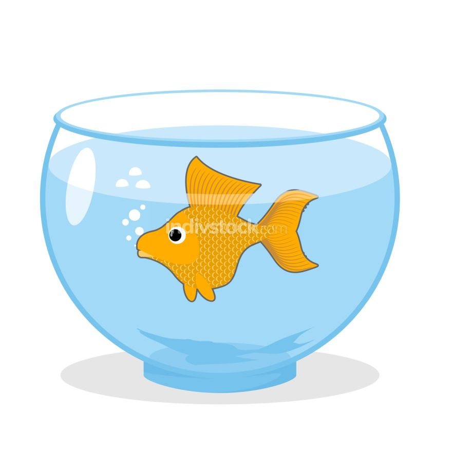 Goldfish in an aquarium. Symbol of fulfillment of all desires. M
