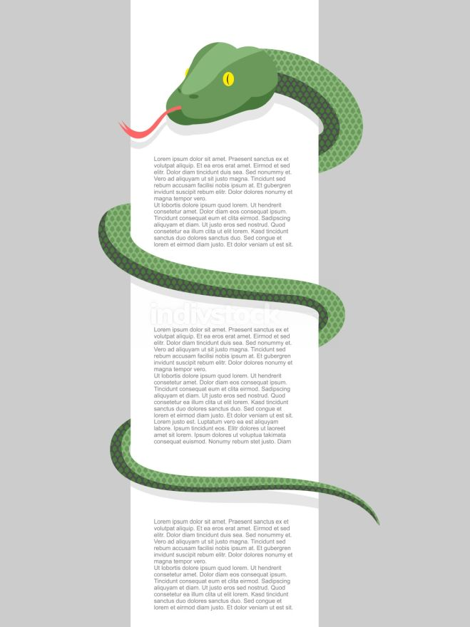 Snake wraps around. With space for text. Vector illustration. Re