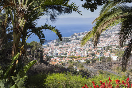 Aerial view of Funchal, capital city of Madeira Island, Portugal