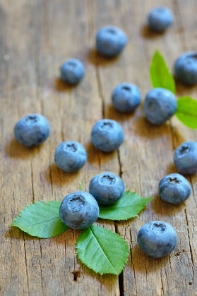 Blueberry on old wood