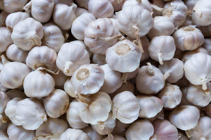 Close up of garlic on market stand