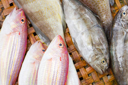 Close up of lovely fresh fish in a wet market