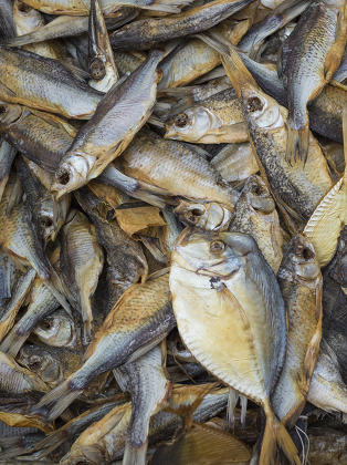 Dried salted fish at a farmers market in Odessa, Ukraine.
