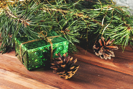 Green gift box under Christmas tree branches