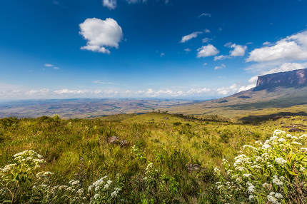 The view from the plateau of Roraima on the Grand Sabana - Venezuela, Latin America