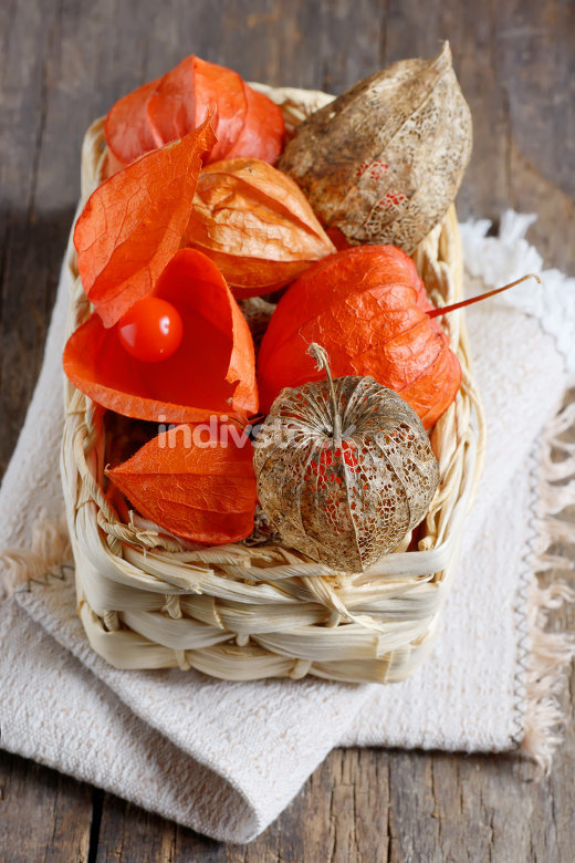 dry Physalis fruits