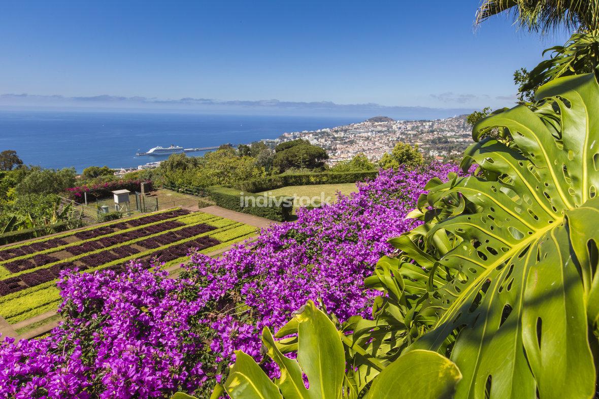 Famous Tropical Botanical Gardens in Funchal town, Madeira islan