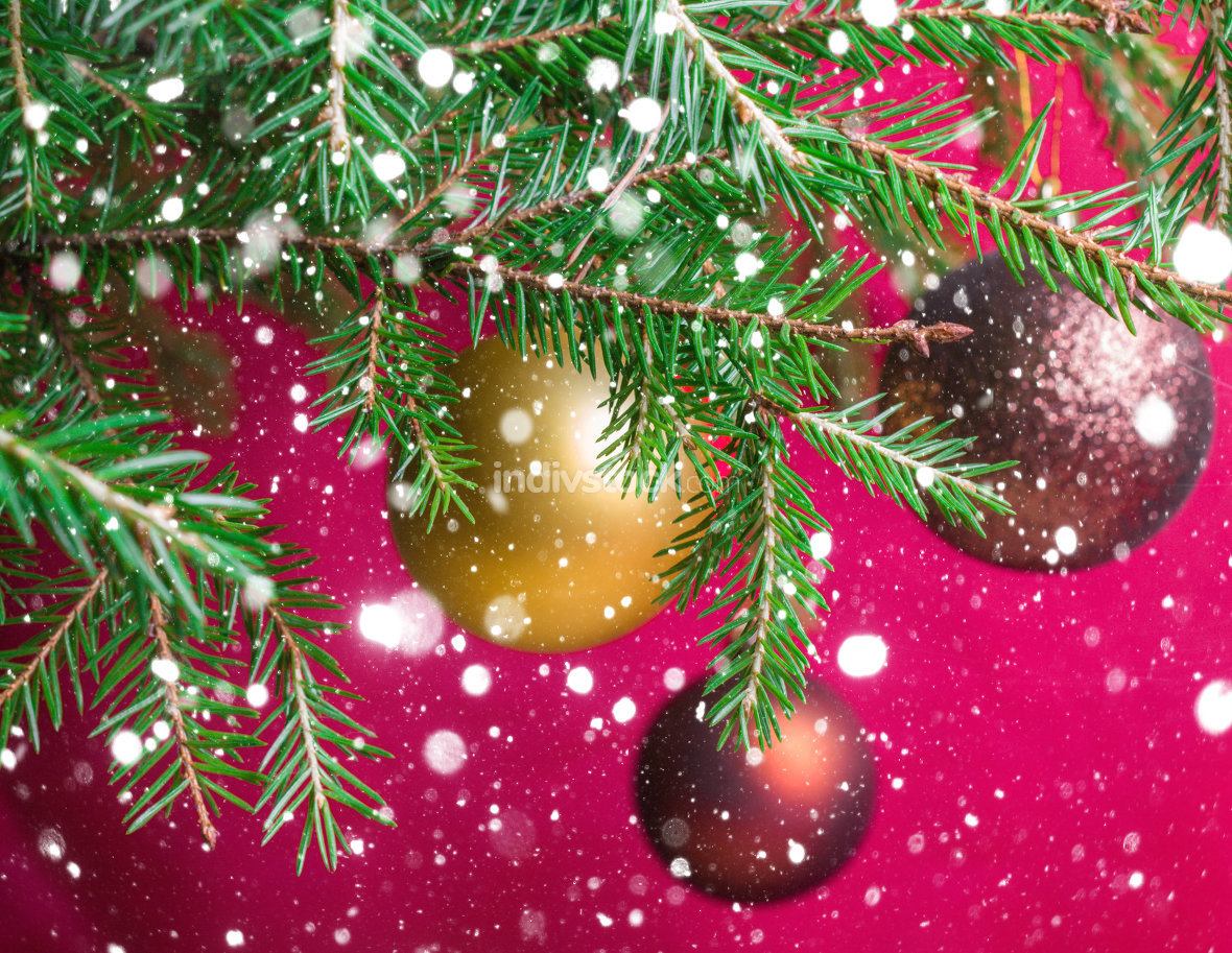 Fir branches with Christmas balls. Stylized falling snow