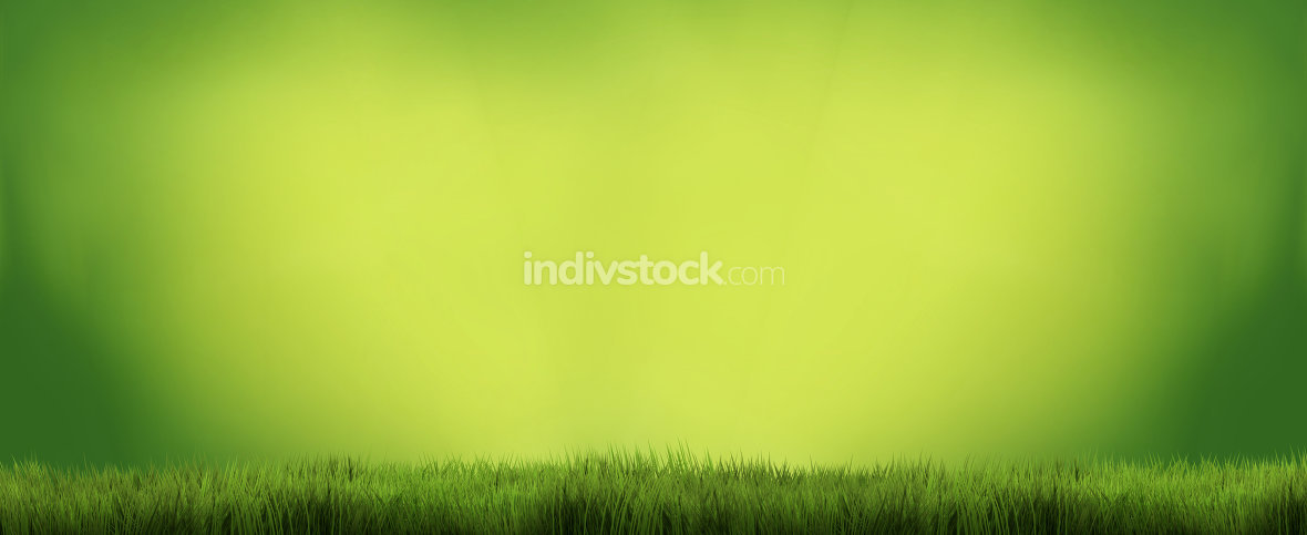 green grass background 3d render