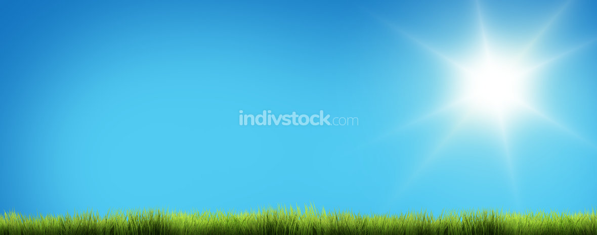 light blue sunny sky green grass 3D render
