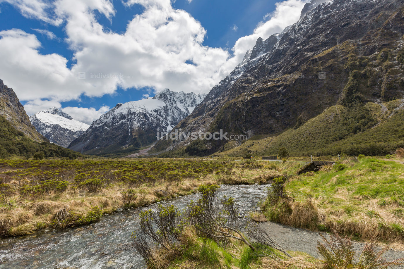 milford road along cleddau valley with the view of fiordland nat