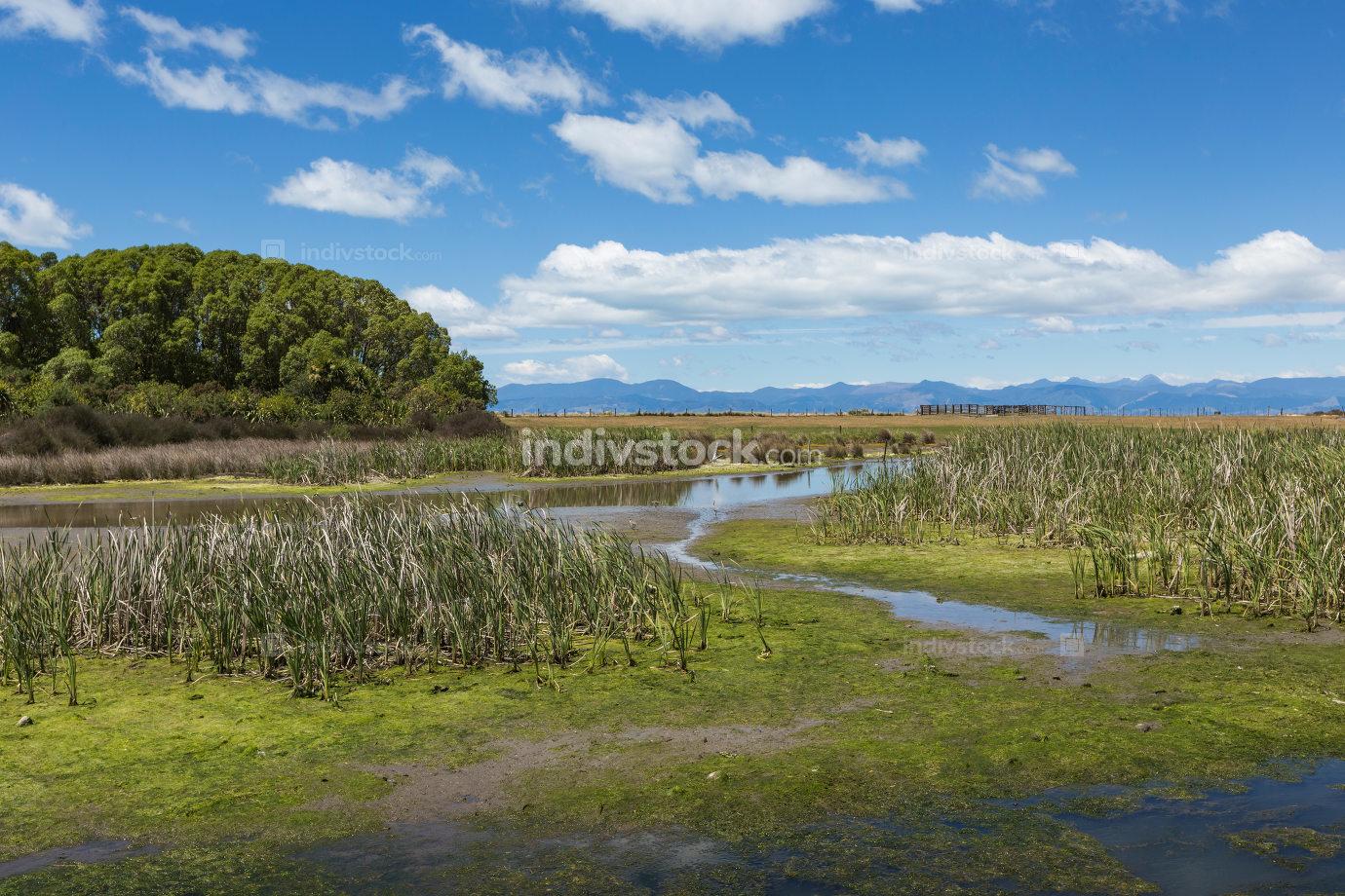 Motueka landscape near Abel Tasman National Park, South Island,