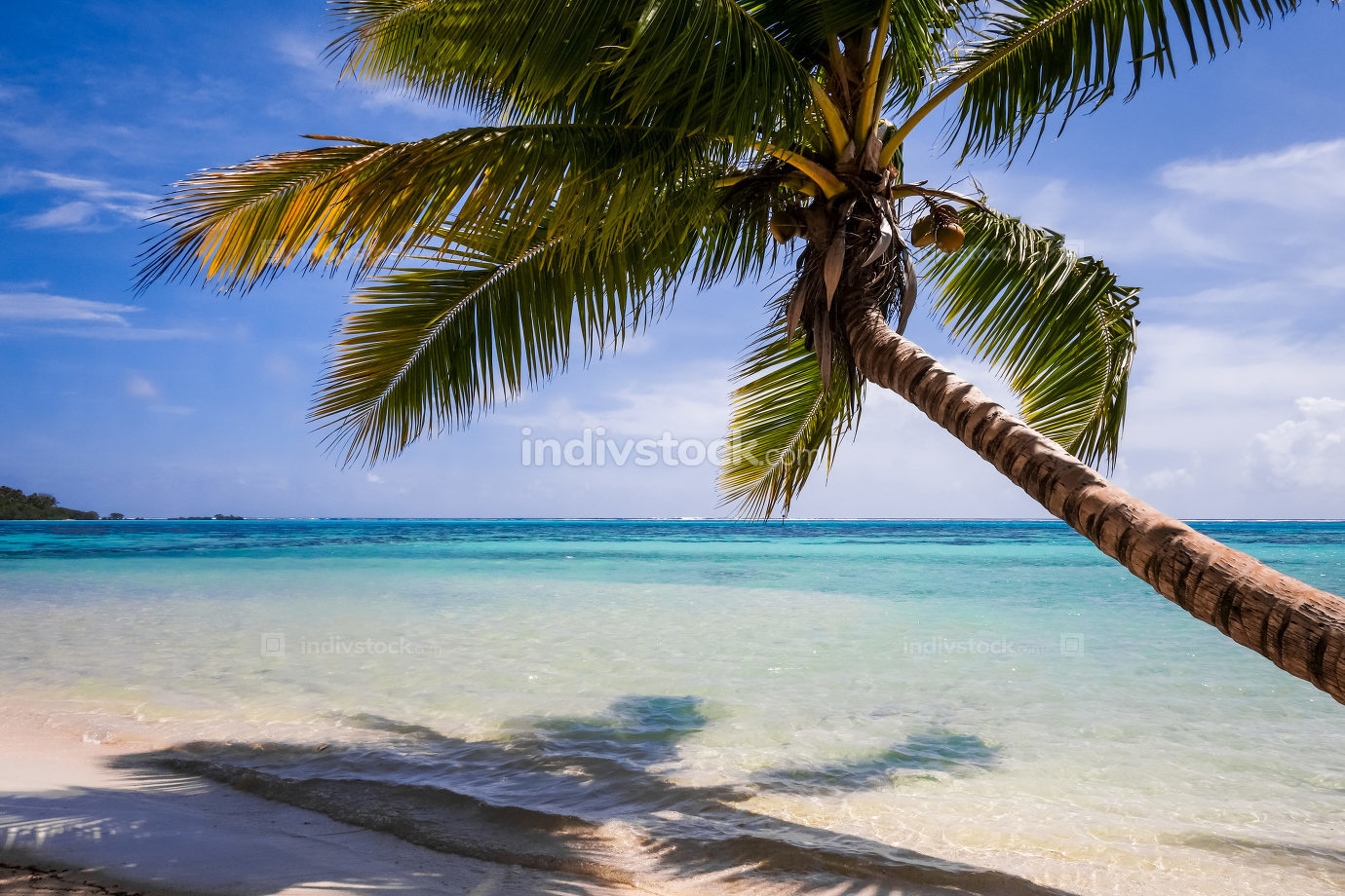 Paradise tropical beach and lagoon in Moorea Island