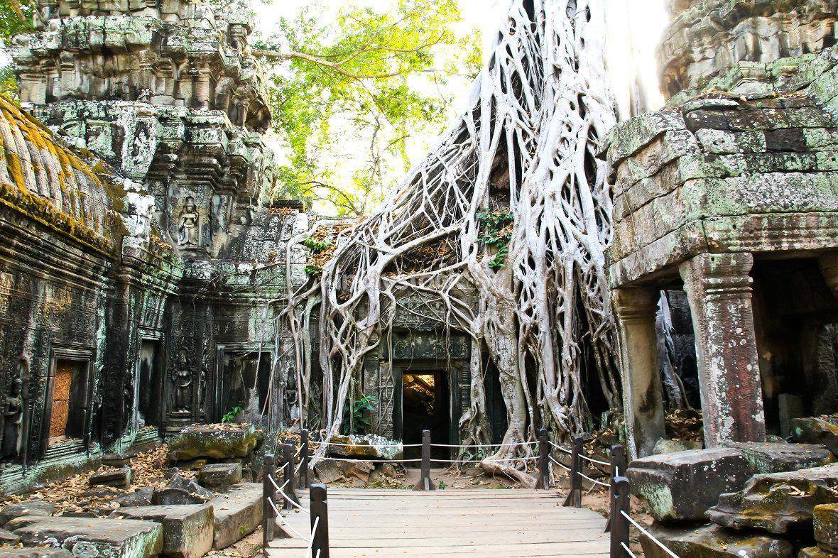 Ta Prohm Temple in Angkor, Siem Reap, Cambodia