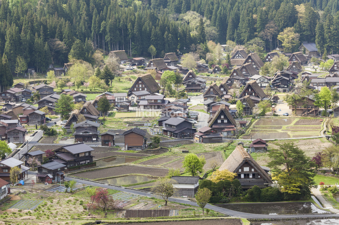 Traditional and Historical Japanese village Ogimachi - Shirakawa