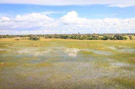Aerial picture of the Okavango Delta.