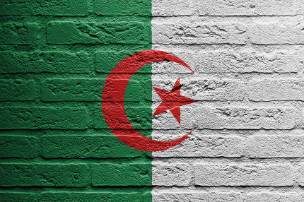 Brick wall with a painting of a flag, Algeria