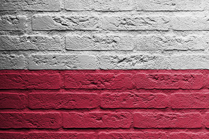 Brick wall with a painting of a flag, Poland