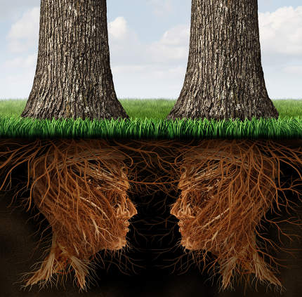Business Roots