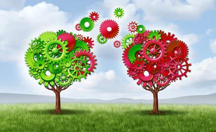 Communication Exchange Partnership