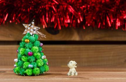 dog looking Christmas tree